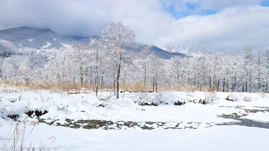 *[冬のいもり池イメージ]新緑はもちろん雪景色の妙高山もステキです!