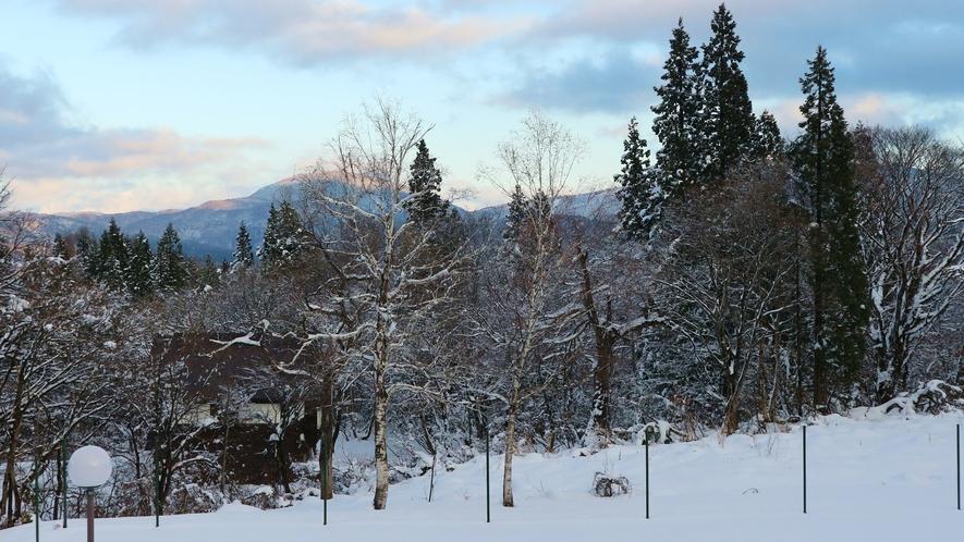 *[冬・客室の眺望一例]晴れていれば斑尾山を望めます