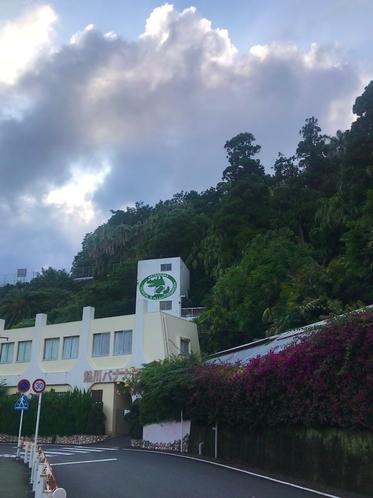 熱川バナナ鰐園