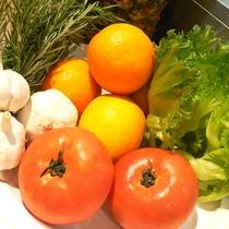朝食バイキング健康野菜