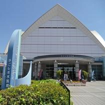 鹿児島水族館いおワールド 徒歩25分