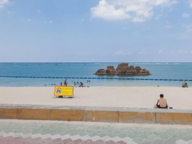 アラハビーチ(ARAHA BEACH)