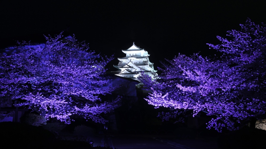 夜の姫路城 日没から午前0時までライトアップしております