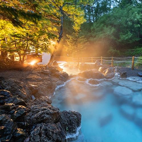 ■露天風呂■幻想的に輝く庭園岩風呂。混浴なのでお連れ様ご一緒にお楽しみいただけます