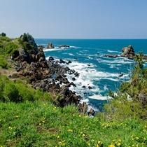 ◆種差海岸