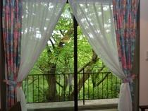 お部屋の窓から眺める美しい景色