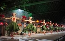 ハワイアンズダンス