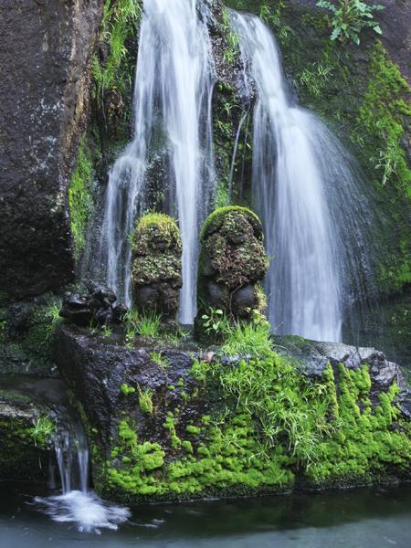溢れる緑と見え隠れする風情豊かな滝