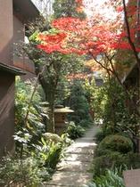 四季折々に情感豊かな趣をみせる日本庭園