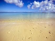 周辺景観_マリンブルーの美しい海はダイバーにも人気です