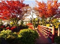 築山庭園、紅葉の頃