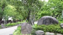 *数十種類の梅が咲く梅園は熱海を代表するスポット。6月にはホタル、秋はもみじライトアップも。