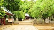 *縁結びで人気のパワースポット伊豆山神社。頼朝と北条政子ゆかりの有名神社です。
