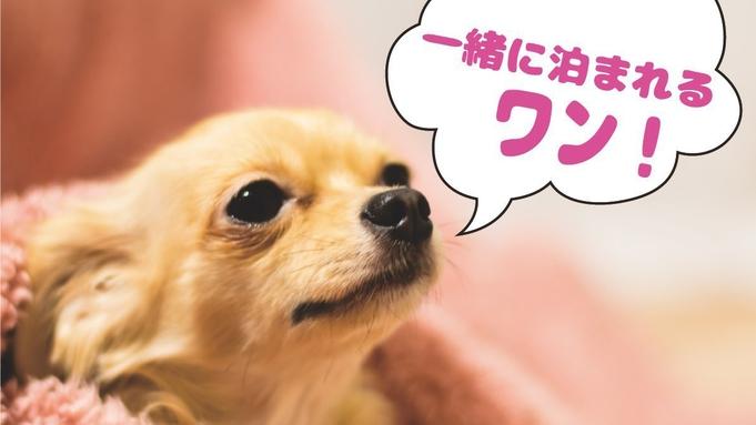 大切なワンちゃんと旅行に出かけよう!愛犬と一緒に泊まれて安心!素泊まりプラン!