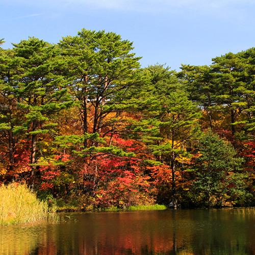 紅葉の山々(イメージ)