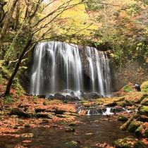 紅葉の不動滝