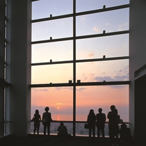 「夜景100選」に選ばれた31階展望室からの夜景は必見!
