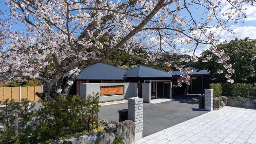 **【外観(春)】春には桜桃(ゆすらうめ)が皆様のお越しをお迎えいたします。