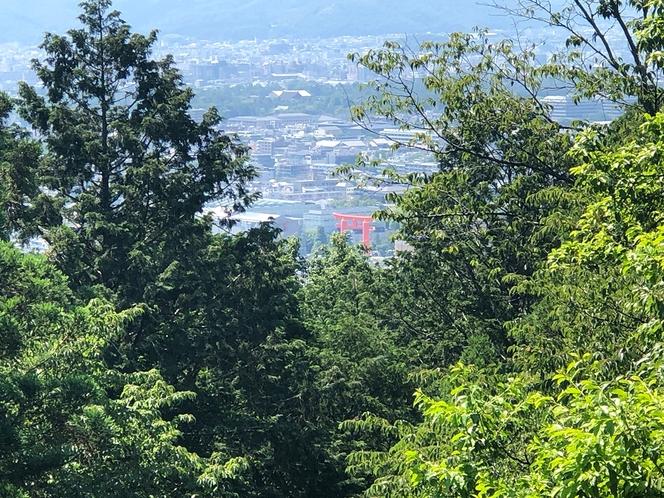 日向神社頂上からの平安神宮