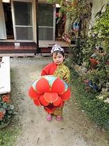 琉装体験幼児