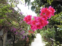 沖縄古民家宿 うもさ入口通り周辺