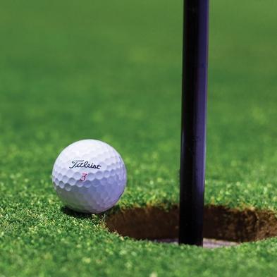 【翌日ゴルフプレー付】プレー前日は白浜温泉&シラハマビュッフェで元気をチャージ◆2食付き