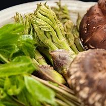 *周辺は豊かな自然環境のため、山菜の宝庫。スタッフが手ずから摘み取っております