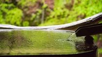 *湯に映る、豊かな山の姿 こんこんと沸き出でるたんげの湯とともに、渓谷美に浸るリラックス時間を