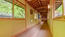 *滝と緑に囲まれた当館。温泉へ続く廊下から見える景色も、四季の美しい景色をご覧いただけます。