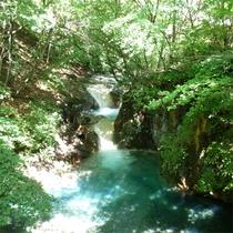 *滝見の湯や一部お部屋から美しいブルーの清流がご覧頂けます