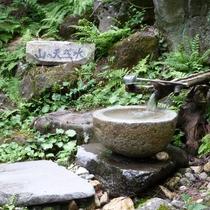 *美郷館周辺の散策コースには、湧き水スポットも