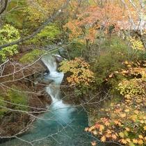 *紅葉シーズンの滝