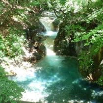 *温泉から見える滝