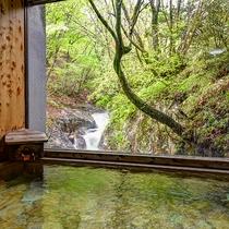 *滝見の湯(小)オーシャンブルーの滝が目の前、屈指の透明度を誇る清流を見ながら湯浴みいただけます。