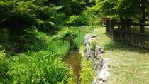麒麟山いこいの森公園