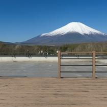 晴天時には富士山と山中湖を望むことができる屋上パノラマガーデン。当館自慢の眺望をお楽しみください。