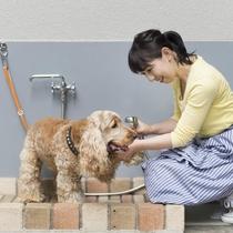 足洗い場のご用意もございます。