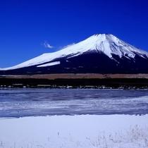 山中湖湖畔から見る冬の富士山