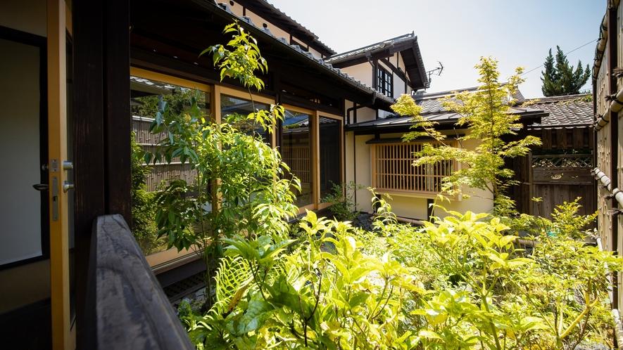 *【中庭】庭師が整えたお庭