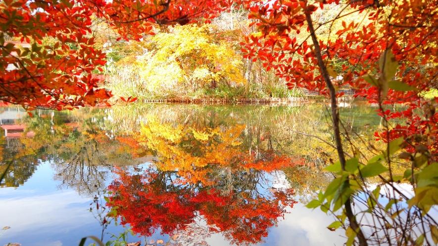 雲場池/当ホテルより車で約14分/秋は湖面を染める美しい秋の朱色と爽やかな空の青が最大の魅力。
