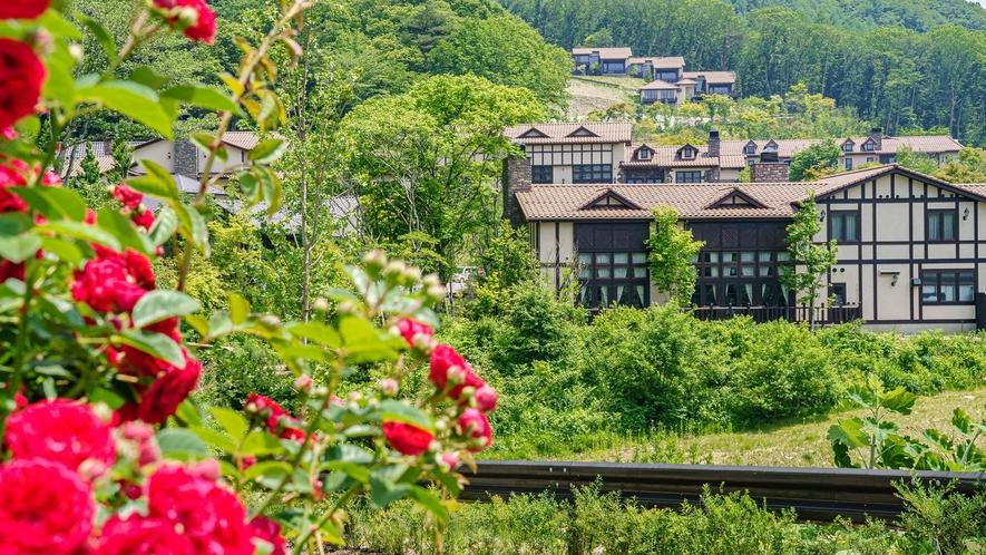 遊歩道・小川/お部屋で寛いだ後は、敷地内を散策してみましょう。自然の緑や心地よい風でリフレッシュ
