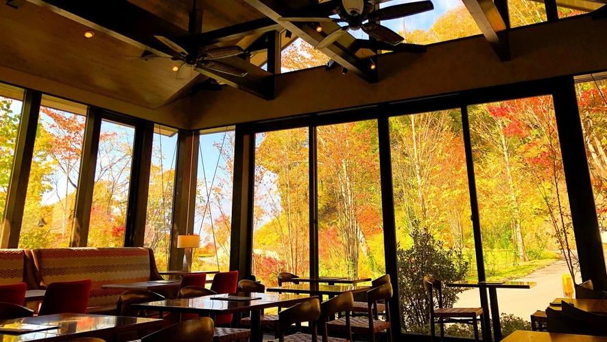お食事処 実乃里(蕎麦)/大自然に包み込まれるような壁一面ガラス張りの空間