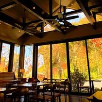 浅間カフェ/大自然に包み込まれるような壁一面ガラス張りの店内。開放的な空間が心地よい施設内のカフェ。
