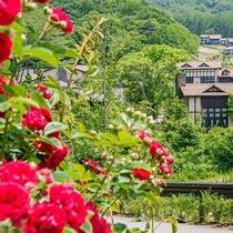 遊歩道・小川/カフェで寛いだ後は、敷地内を散策してみましょう。季節の花々が目を楽しませてくれます