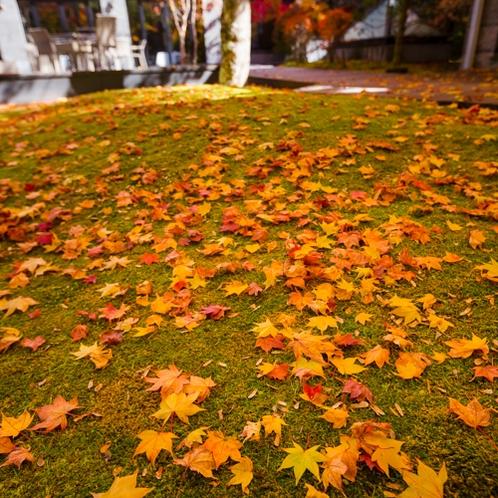 Hotel Exterior - Autumn