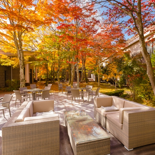 Wood Deck - Autumn