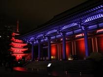 【東長寺】車で10分!空海(弘法大師)が日本で最初に創建したお寺。日本で一番古い霊場として有名。
