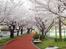 【山王公園】徒歩で10分!うるおいと安らぎのある緑豊かな公園でお散歩してみてはいかがでしょうか。