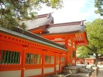 【住吉神社】車で7分!浄化力抜群!全国の住吉神社でも一番古い神社です。