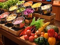 チョップドサラダ 福岡・九州産の新鮮な野菜をご用意しております。女性に人気のパクチーも!